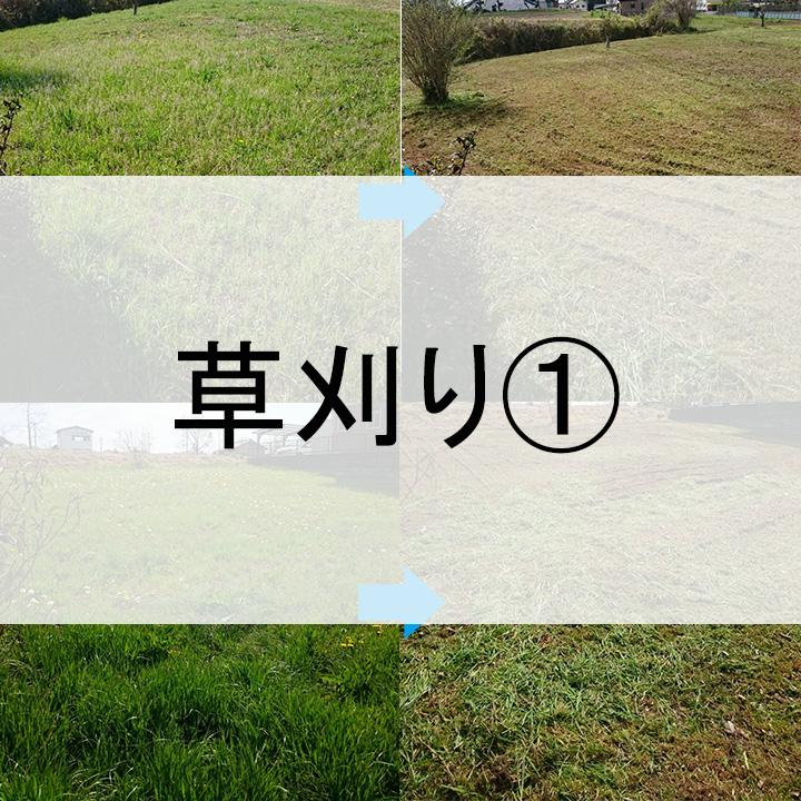 草刈り①サムネ
